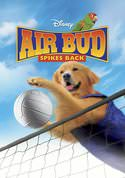 Air Bud 5: Spikes Back